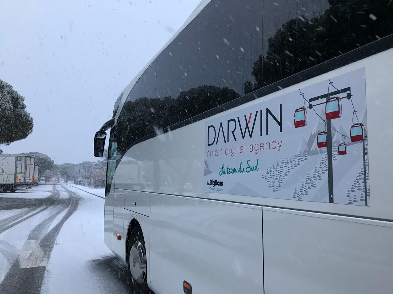 Bus-Darwin